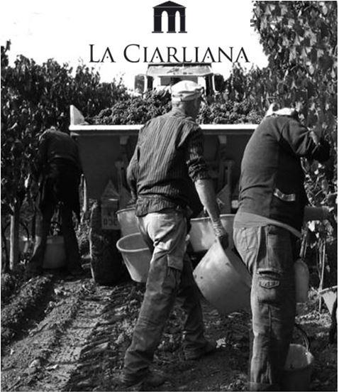 La Ciarliana 2 2016